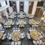 Ghế tiffany nhà hàng tiệc cưới